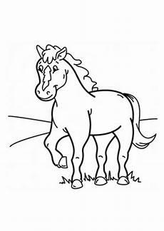 Pferde Fohlen Ausmalbilder Ausmalbilder Fohlen Auf Der Wiese Pferde Malvorlagen