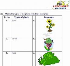 types of plants worksheets for grade 2 13744 grade 2 evs part 3 1 0 apk android education apps