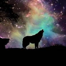 Wallpaper Galaxy Aesthetic Wolf by Wolf 2 Mini For Parallax Wallpapers Hd