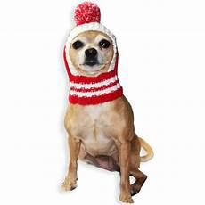 hund mit mütze strick hundem 252 tze crown in 3 gr 246 ssen m 252 tzen f 252 r hunde
