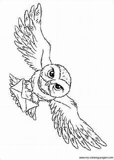 harry potter owl malvorlage f 252 r kinder harry potter owl
