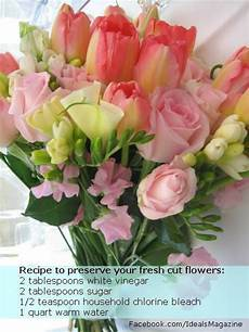 1000 images about drying flowers herbs pinterest pressing flowers preserve and