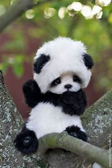 Menakjubkan 15 Gambar Binatang Panda Yang Lucu Gambar