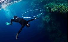 free diving diving info