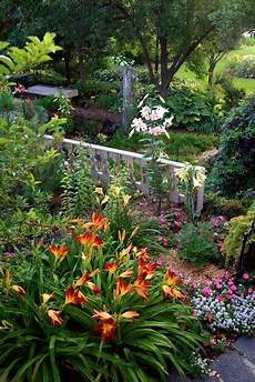 17 best images about flower combinations pinterest gardens the cottage and perennials