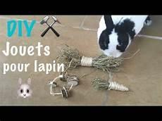 diy 2 jouets pour lapin