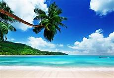 tropical island paradise photo tour sold out destin sparks