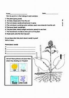 english worksheets photosynthesis worksheets page 1