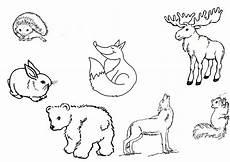 ausmalbilder waldtiere 03 waldtiere ausmalbilder tiere
