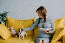 ᐅ 23 Besten Hunderassen F 252 R Kleine Wohnungen Guter Hund De