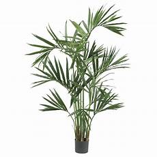 Six Foot Silk Kentia Palm Tree 13549673 Overstock