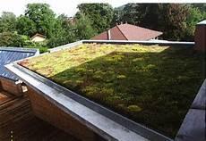 toit terrasse vegetal toitures v 233 g 233 tales arrosage goutte 224 goutte
