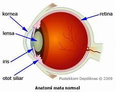 Materi Alat Optik