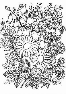 Blumen Ausmalbilder Erwachsene Blumen 3 Ausmalbilder F 252 R Erwachsene
