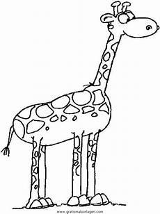 giraffen 08 gratis malvorlage in giraffen tiere ausmalen