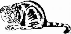 Malvorlage Gestreifte Katze Gestreifte Katze Duckend Ausmalbild Malvorlage Tiere