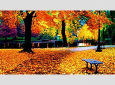 Fall Colors Wallpaper Desktop   Amazing Wallpapers