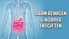 körper entgiften darm reinigen k 214 rper entgiften die unglaubliche kraft