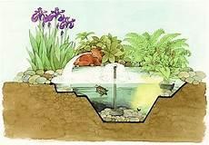 maintenir une eau de bassin limpide et bassin de