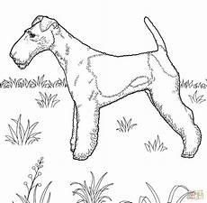 malvorlage hund russel kleurplaat russel malvorlage russel ausmalbild