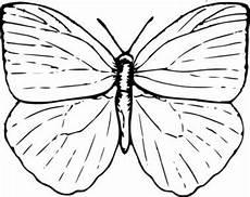 Kostenlose Malvorlagen Tiere Cheats Schmetterling Clipart Clipart Bilder Kostenlose Cliparts