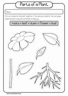 parts of the plants worksheets for grade 1 13716 13 best images of part whole worksheets as periodic table of elements 2nd grade fraction