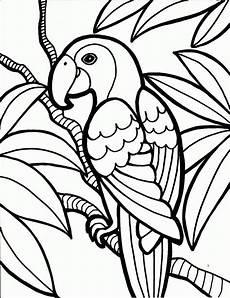 Malvorlage Papagei Einfach Malvorlagen Papagei Zeichnen