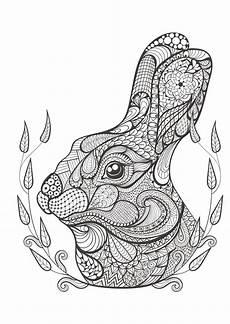 Malvorlagen Unicorn Rabbit ワイルド アニマルズ 世界のぬりえ 1 ハーパーコリンズ ノンフィクション 本 通販
