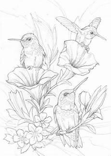 Aquarell Malvorlagen Tiere Pin Angelika Lang Auf Vogel In 2020 Mit Bildern