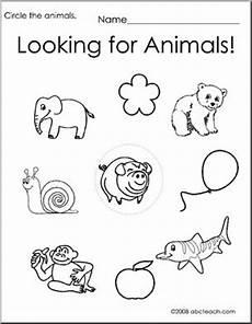 animal worksheets for high school 14306 worksheet circle the animals 2 preschool primary b w abcteach