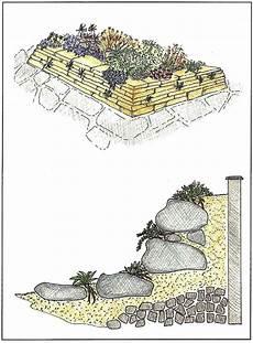 steingarten anlegen aufbau zimmer und gartenblumen