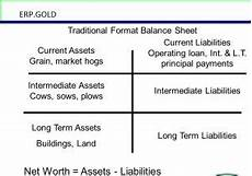 what are the parts of a balance sheet erp gold