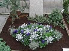grab bepflanzen ideen bildergebnis f 252 r grabbepflanzung allerheiligen