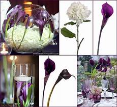 pin by afloral on wedding centerpieces purple calla
