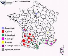 Diagnostic Merule Tarif Diagnostic Immobilier Obligatoire Vente 224 75 77 92