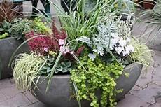 geschmackvolle bepflanzung f 252 r balkon und terrasse