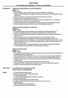 critical care nurse resume sles velvet