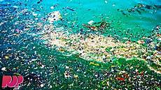 the great pacific garage the great pacific garbage patch what you need to