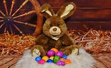7x5ft Rabbits Easter Eggs Photography by Free Images Autumn Rabbit Egg Easter Bunny Easter