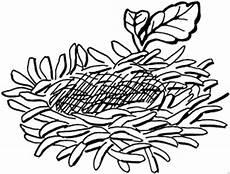 malvorlage vogel im nest leeres vogelnest ausmalbild malvorlage fr 252 hling