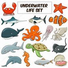 Unterwasser Tiere Malvorlagen Bilder Unterwasser Tiere Set Vektor Stockvektor