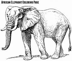 free printables for elephant day sept 22