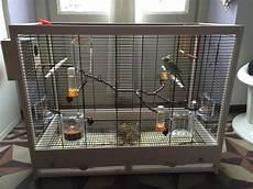 accessori per gabbie uccelli accessori gabbia e nido cocorite e pappagallini ondulati