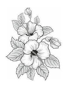 Malvorlagen Hawaii Blumen Learn To Draw A Realistic Blumen Zeichnen