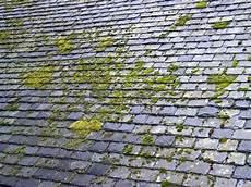 mousse sur le toit comment faire le d 233 moussage d une toiture