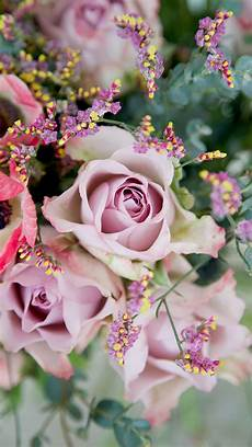 free flower wallpaper for phone free floral phone wallpapers collection bibs