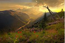 Flower Valley Wallpaper by Earth Most Beautiful Flower Valley