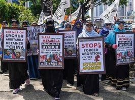 Image result for the treatment of the uyghurs