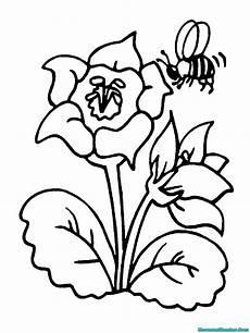 Buku Mewarnai Gambar Lebah Mewarnai Gambar