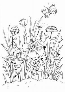 Ausmalbild Schmetterling Wiese Ausmalbilder Blumenwiese 01 Blumen Ausmalbilder